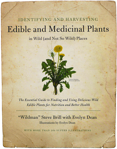 Identifying and Harvesting Edible and Medicinal Plants In Wild and Not So Wild Places by Steve Brill