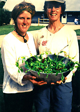A wild salad made by Kia Carscallen and Nancy Byrne at the 2001 North Carolina Wild Food Weekend