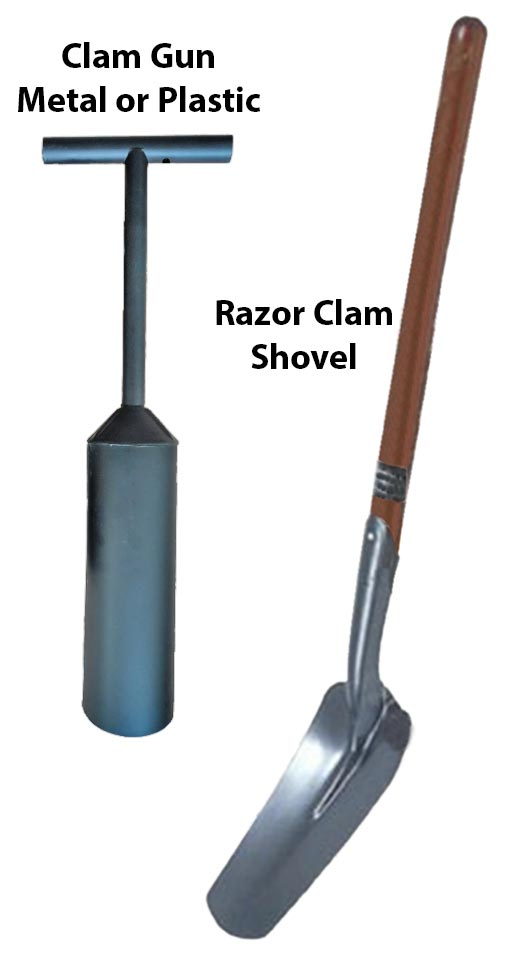 Clam Gun and Shovel